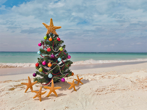Top 6 Reasons to Spend Christmas at the Beach - Currituck ...