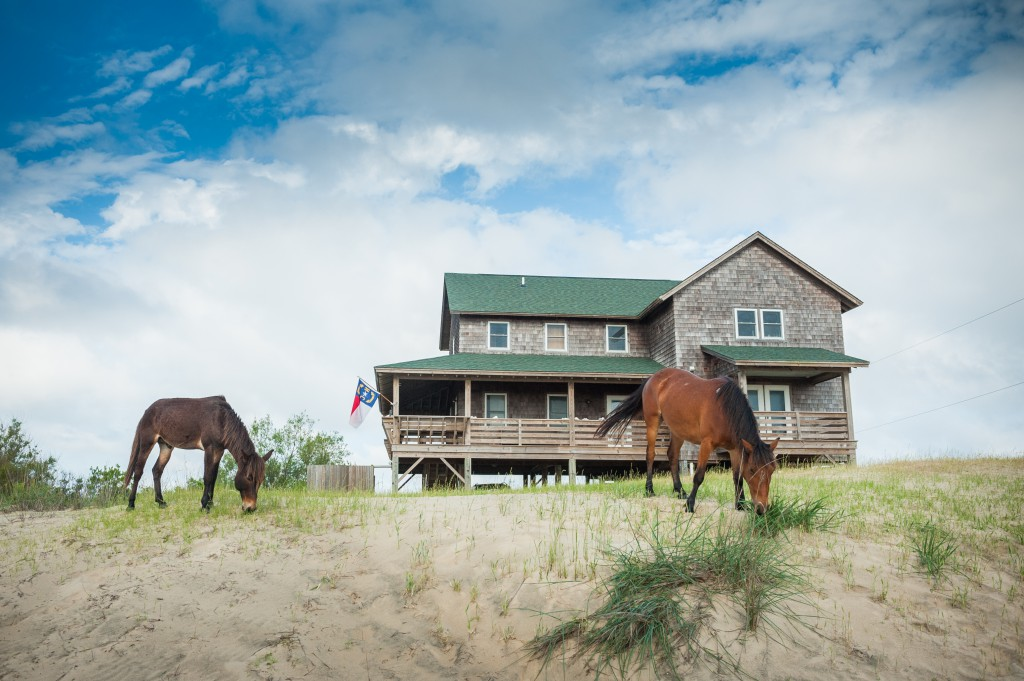Outer Banks Wild Horses and Vacation Home